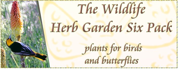 THE WILDLIFE HERB GARDEN PLANTS FOR BIRDS AND BUTTERFLIES