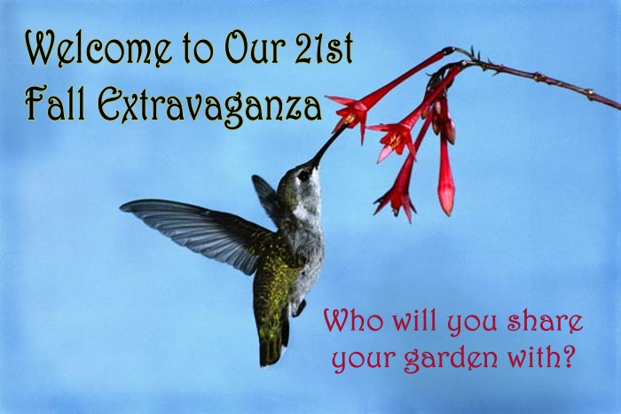 Welcome to our 21st Fall Extravaganza!
