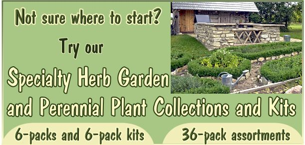 Specialty Herb Garden Six Packs, Herb Garden Kits and 36 Pack Herb Garden and Perennial Assortments make it easier to plant the garden of your dreams.