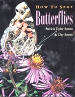 How to Spot Butterfllies