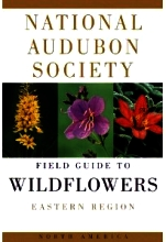 National Audubon Sociey Field Guide to Wildflowers Eastern Edition